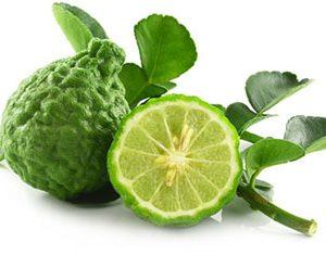 Bergamot – Citrus aurantium var. bergamia